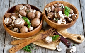 Picture mushrooms, dill, spoon, knife, plug, mushrooms, bowls, Portobello