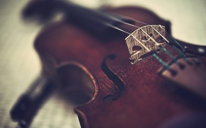 Picture violin, Music, tool