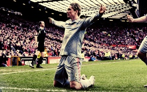 Picture field, grass, joy, football, victory, sport, sport, athletes, Fernando Torres, football liverpool, Liverpool, players, moments ...