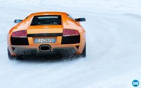 Picture winter, road, snow, orange, Lamborghini, supercar, rear view, Murcielago, top gear, Lamborghini, top gear, top …