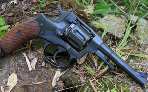 Picture weapons, revolver, revolver, Nagant