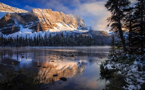 Picture autumn, reflection, lake, morning, Canada, Rocky mountains, Banff national Park, Bow