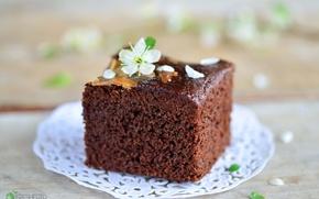 Picture chocolate, cake, dessert