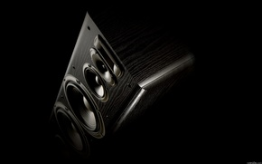 Picture Speakers, Acoustics, Dynamics