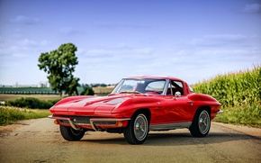 Picture Corvette, Chevrolet, Chevrolet, Corvette, 1963, Sting Ray C2