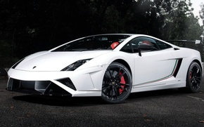 Picture white, Lamborghini, Gallardo, LP 570-4, Lamborghini, Gallardo
