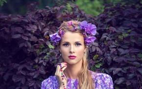 Picture look, leaves, flowers, portrait, all purple, sirenevo