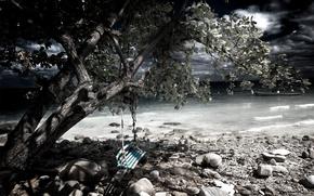 Picture stones, swing, tree, shore