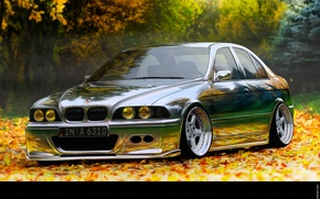 Picture auto, bmw, chrome, stance, stens, 5, 5, 5series