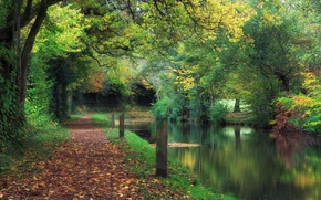 Picture autumn, Park, channel, UK, falling leaves, Wales, Wales, Llanover