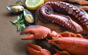 Picture lemon, food, octopus, tentacles, Board, parsley, seafood, mussels, lobster