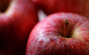 Wallpaper macro, apples, harvest, fruit
