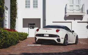 Picture Ferrari, Car, Auto