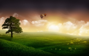 Picture the sky, grass, fog, fiction, tree, balls