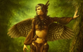 Picture forest, girl, tree, bird, wings, feathers