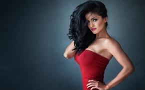 Picture brunette, look, pose, elegant, red dress
