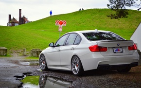 Picture BMW, white, F30, rearside