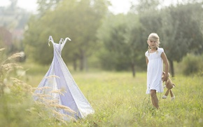 Picture field, summer, toy, girl