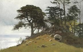Wallpaper trees, landscape, stones, picture, Albert Bierstadt, Cypress Point. Monterey