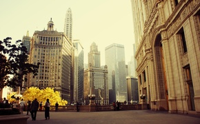 Picture the city, spring, skyscrapers, Chicago, Illinois