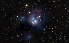 Picture stars, nebula, NGC 7129, Tsefey