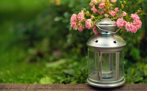 Picture greens, grass, flowers, candle, blur, flashlight, lantern, pink