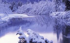 Picture winter, snow, landscape, river, winter