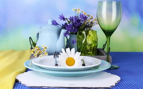 Picture FLOWERS, CHAMOMILE, DISHES, CORNFLOWERS