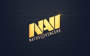 Picture Dota 2, Na'vi, Natus Vincere, CS:GO
