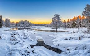 Picture winter, snow, trees, river, Finland, Finland, Oulu, Oulu, Kiiminki River River, Koiteli the