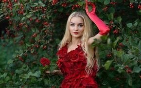 Picture flower, leaves, girl, nature, berries, rose, Bush, makeup, petals, dress, blonde, hawthorn