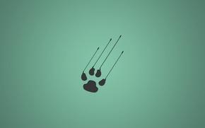 Picture minimalistic, animal, paw