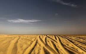Picture sand, nature, desert, Sugar, Tunisia, Northern Sahara