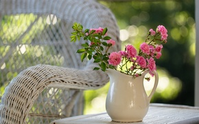 Picture flowers, nature, table, roses, chair, pink, pitcher