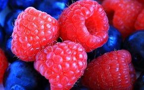 Picture berries, raspberry, blueberries