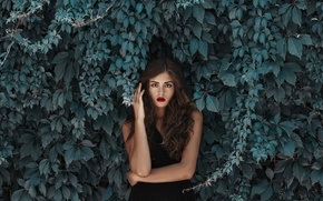 Picture leaves, girl, face, hair, dress, beauty