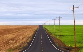 Picture road, greens, posts, field, two