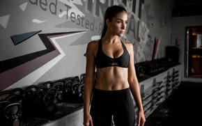 Picture background, figure, fitness, press, the gym, Dani