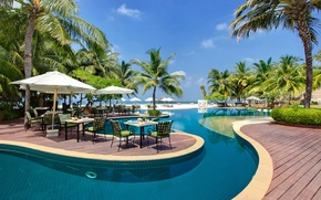 Picture palm trees, pool, restaurant, resort