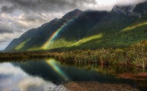 Picture trees, rain, rainbow, pond