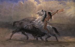 Wallpaper picture, hunting, Indian, genre, Albert Bierstadt, The Last Bison