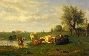 Wallpaper landscape, picture, Cows on the Meadow, Albert Gerard Bilders