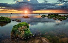 Picture clouds, algae, sunset, stones, Bay, rain