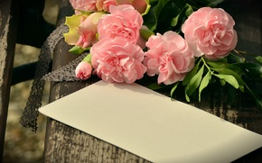Picture flowers, paper, Board, bouquet, bench, the envelope, clove