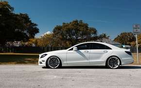 Picture Mercedes, side view, White, Matte, Tuning, CLS 550