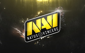 Picture wallpaper, team navi, natus vincere, dota 2, navi