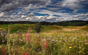 Picture summer, the sky, clouds, flowers, hills, field