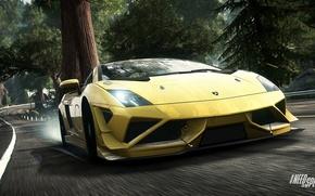 Picture Need for Speed, nfs, 2013, Rivals, NFSR, Lamborghini Gallardo LP 570-4 Super Trofeo