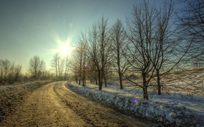 Picture road, the sun, snow, trees, Winter, dirt