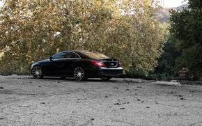 Picture black, Mercedes Benz, CLS550